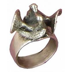 Pigeons ring