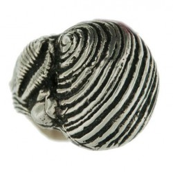 Bague 3 coquillages