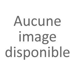 Pendentif sirène Toulhoat